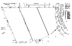 54 Ringwood Dr Plan